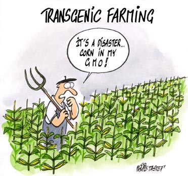 Press cartoon : Transgenic farming