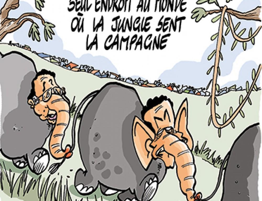 Démantèlement de la jungle de Calais