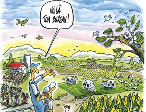 L'agriculture créatrice d'emploi